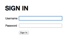 The sign-in form